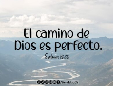 Su camino es perfecto